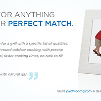 Perfect Match Gas Company Advertisement, Piedmont Natural Gas