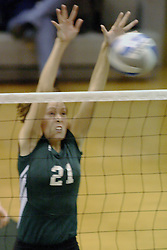 27 October 2006: Katie Butson sucessfully blocks a Bear strike. The Bears won the match 3 games to 1. The match between the Washington University Bears and the Illinois Wesleyan Titans took place at Shirk Center on the IWU campus in Bloomington Illinois.<br />