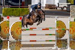 Heijligers Rob, NED, Illusion<br /> Nationaal Kampioenschap KWPN<br /> 7 jarigen springen round 2<br /> Stal Tops - Valkenswaard 2020<br /> © Hippo Foto - Dirk Caremans<br /> 18/08/2020