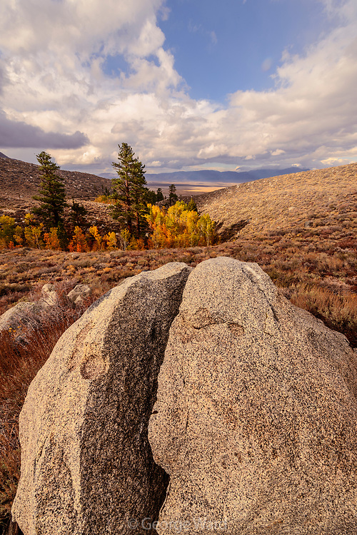 Split Boulder above Canyon, Inyo National Forest, Mono County, Caifornia
