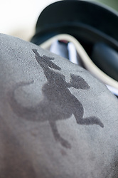Hoy Andrew (AUS) - Rutherglen<br /> boxing kangaroo quarter-marks<br /> Dressage<br /> CCI4*  Luhmuhlen 2014 <br /> © Hippo Foto - Jon Stroud