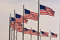 American flags wave in the breeze, Washington Monument, Washington D.C., U.S.A.