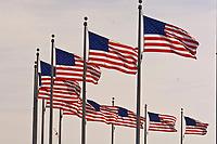 American flags wave in the breeze, Washington Monument, Washington D.C., U.S.A.
