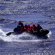 Antarctica, Tourists in zodiac being shuttled to Emperor Penguin rookery.