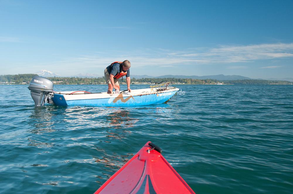 Lummi Island, San Juan Islands, Washington. Crab fishing, gman throwing back female crab.