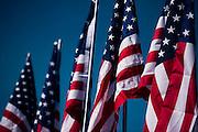 June 30- July 3, 2016: Sahleen 6hrs of Watkins Glen, American flags at Watkins Glen