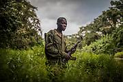 Le parc de la Salonga, isolé et constitué de forêt dense, est relativement bien protégé des groupes armés sévissant en RDC. Les rangers doivent cependant porter une arme en cas de confrontation avec des braconniers, parfois lourdement armés.