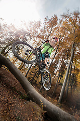 Mountain biker jumps over a tree trunk in forest, Bavaria, Germany