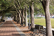Benches along Waterfront Park on a foggy morning in historic Charleston, SC.