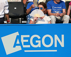 June 19, 2017 - London, United Kingdom - Fan with a Fan.during Round One match on the first day of the ATP Aegon Championships at the Queen's Club in west London on June 19, 2017  (Credit Image: © Kieran Galvin/NurPhoto via ZUMA Press)