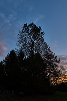 Autumn Sunrise Panorama. One of seven images taken with a Leica CL camera and 18 mm f/2.8 lens (ISO 200, 18 mm, f/11, 1/60 sec).