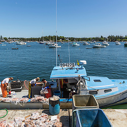 Bait is loaded onto the 'Isabella - Jack' at the Vinalhaven Fishermen's Co-op in Vinalhaven, Maine.