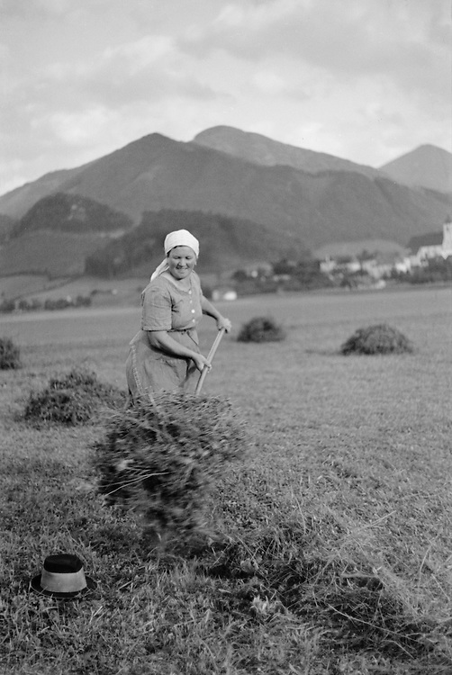 Woman pilling hay with pitchfork, Molln, Austria, 1935