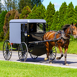 Ronks, PA, USA - August 30, 2020: An Amish buggy travels on a rural road in Lancaster County.