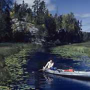 A canoeist on the Kawishiwi River in MInnesota. The lily pads show signs of an early fall.