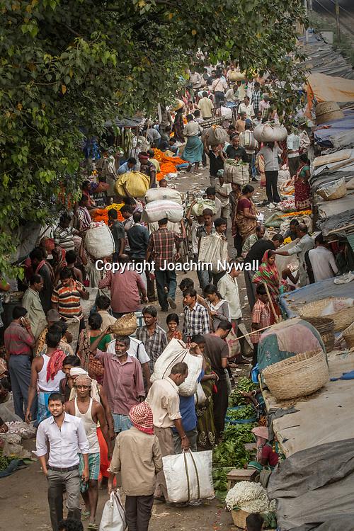 2014 10 29  Kolkata Calcutta <br /> West Bengal India Indien<br /> Malik Ghat flower market <br /> Blomstermarknaden<br /> <br /> <br /> <br /> <br /> ----<br /> FOTO : JOACHIM NYWALL KOD 0708840825_1<br /> COPYRIGHT JOACHIM NYWALL<br /> <br /> ***BETALBILD***<br /> Redovisas till <br /> NYWALL MEDIA AB<br /> Strandgatan 30<br /> 461 31 Trollhättan<br /> Prislista enl BLF , om inget annat avtalas.
