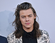 HARRY STYLES @ the 2015 American Music Awards held @ the Micorsoft theatre.<br /> ©Exclusivepix Media
