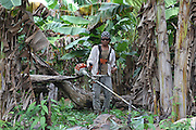 Surui cash crops, banana plantations inside Surui territory<br /><br />An Amazonian tribal chief Almir Narayamogo, leader of 1350 Surui Indians in Rondônia, near Cacaol, Brazil, with a $100,000 bounty on his head, is fighting for the survival of his people and their forest, and using the world's modern hi-tech tools; computers, smartphones, Google Earth and digital forestry surveillance. So far their fight has been very effective, leading to a most promising and novel result. In 2013, Almir Narayamogo, led his people to be the first and unique indigenous tribe in the world to manage their own REDD+ carbon project and sell carbon credits to the industrial world. By marketing the CO2 capacity of 250 000 hectares of their virgin forest, the forty year old Surui, has ensured the preservation, as well as a future of his community. <br /><br />In 2009, the four clans and 25 Surui villages voted in favour of a total moratorium on logging and the carbon credits project. <br /><br />They still face deforestation problems, such as illegal logging, and gold mining which causes pollution of their river systems