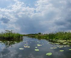 Panorama Naardermeer, Netherlands