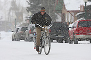 """SHOT 1/12/09 1:13:03 PM - A Crested Butte, Co. local rides his bike down Elk Avenue, the town's main street, during a snowstorm. Bikes are a popular form of transportation in the small mountain town even in the wintertime. Crested Butte is a Home Rule Municipality in Gunnison County, Colorado, United States. A former coal mining town now called """"the last great Colorado ski town"""", Crested Butte is a destination for skiing, mountain biking, and a variety of other outdoor activities. The population was 1,529 at the 2000 census. The Colorado General Assembly has designated Crested Butte the wildflower capital of Colorado. The primary winter activity in Crested Butte is skiing or snowboarding at nearby Crested Butte Mountain Resort in Mount Crested Butte, Colorado. Backcountry skiing in the surrounding mountains is some of the best in Colorado. The mountain, Crested Butte, rises to 12,162 feet (3,700 m) above sea level..(Photo by Marc Piscotty / © 2009)"""