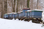Easter in Southern Styria, Austria. Kitzeck in the snow. Beehives.