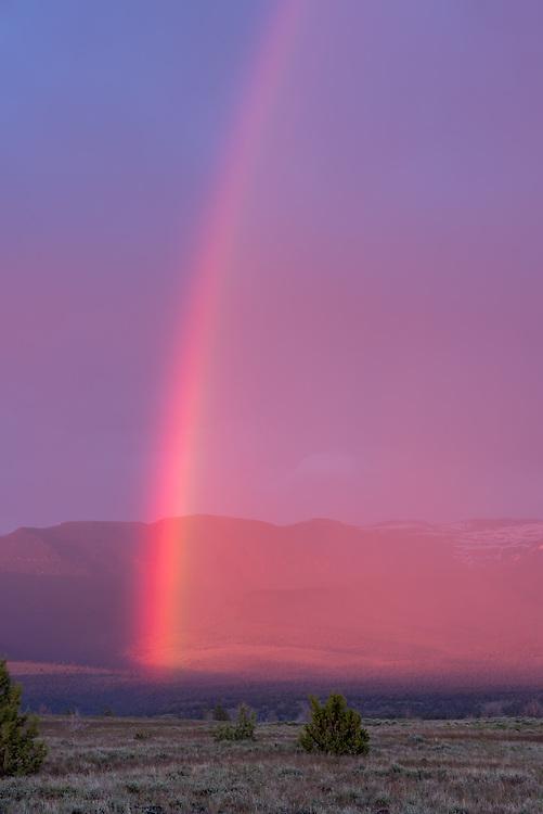Steens Mountain rainbow, Oregon.