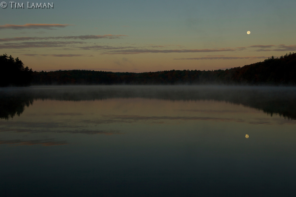 """""""Full Moon Reflection"""".Full moon reflecting in Walden Pond just before sunrise."""