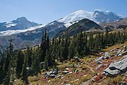 Hike up Burroughs Mountain in Mount Rainier National Park, Washington, USA. Mount Rainier rises to 14,411 feet elevation.