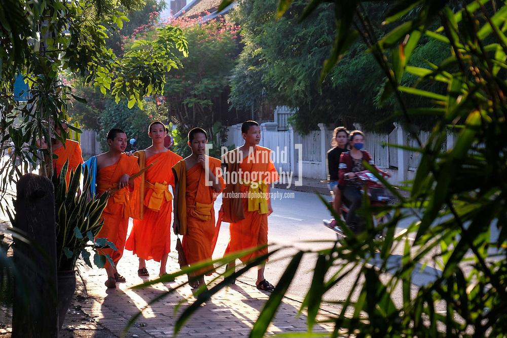 Novices walking along the riverside in Luang Prabang