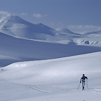 Cross country skiers on lonely track across arctic island.