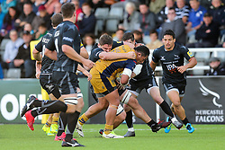 Anthony Perenise of Bristol Rugby in action - Rogan Thomson/JMP - 08/10/2016 - RUGBY UNION - Kingston Park - Newcastle, England - Newcastle Falcons v Bristol Rugby - Aviva Premiership.