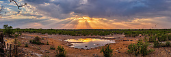 Landscape and waterhole during sunset at Etosha National Park, Namibia, Africa