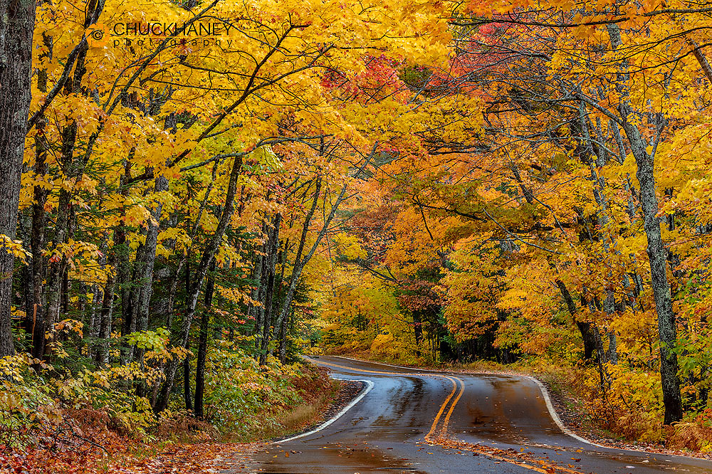 Highway 41 covered roadway in autumn near Copper Harbor in the Upper Peninsula of Michigan, USA