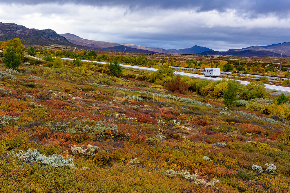 Dove mountains (Innlandet, Norway) viewing towards Grytdalen in early September when the vegetation turns yellow.