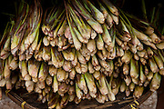 Luang Prabang, Laos. Morning food market. Lemon grass.