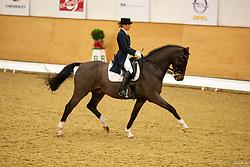 , Elmshorn Horse & Classic 28. - 30.11.2008, Ludwig Löwenherz - Mestern, Julia