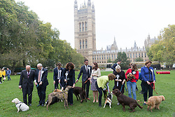 © Licensed to London News Pictures. 26/10/2017. LONDON, UK.  Members of Parliament (MP's) at the Westminster Dog of the Year Competition held in Victoria Tower Gardens. The Westminster Dog of the Year Competition is organised jointly by the Kennel Club and the Dogs Trust..  Photo credit: Vickie Flores/LNP