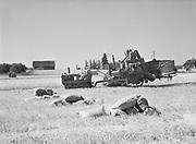 6730. Combine cutting wheat on a farm near Bethany, Oregon. August 20, 1946.