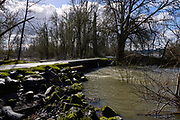High water side channels at Willamette Mission State Park