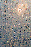sunlight is filtered and diffused through moisture condensed on a window