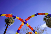 03 JANUARY 2009 -- PHOENIX, AZ: Balloons and palm trees in the skyline during the annual Ft. McDowell Fiesta Bowl parade through Phoenix, AZ. More than 150,000 spectators line the parade routes which starts in north Phoenix and winds down Central Ave and 7th Street before ending in central Phoenix. More than 100 units march in the parade.  PHOTO BY JACK KURTZ