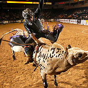 """Local bull rider Arnoldo Guzman, of Weslaco, is bucked out of his seat on """"Wrangler"""" during the PBR Challenge at the State Farm Arena in Hidalgo. <br /> Nathan Lambrecht/The Monitor"""