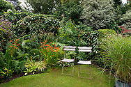 A lawned area with a mixed border of ferns and crocosmia and 1920's wooden chairs in <br /> Diana Ross's London garden.  London, UK