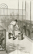 'Laboratory animals at the Institut Pasteur, Paris, used during research ion hydrophobia (Rabies):  Drilling into  the brain rabbit.  Engraving, Pa;ris, 1873.'