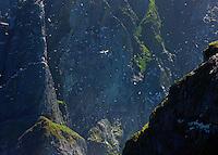 Isla Boreray. Archipielago St. Kilda. Outer Hebrides. Scotland, UK