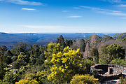 The Blue Mountains Botanic Garden, originally known as Mount Tomah Botanical Garden, is a 28-hectare public botanic garden located approximately 100 kilometres west of the Sydney central business district, The Blue Mountains, New South Wales, Australia.The Northern Blue Mountains Wilderness-Looking Towards Wollemi and Yengo National Park.