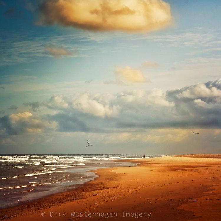 Contis-Plage, France - Empty beach in morning light<br /> Redbubble--> https://www.redbubble.com/shop/ap/17478649?asc=u<br /> Prints: http://society6.com/product/my-dream-beach_Print