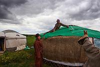 Mongolie, Province de Ovorkhangai, Vallee de l'Orkhon, déménagement d'un campement nomade, construction des yourtes // Mongolia, Ovorkhangai province, Orkhon valley, Nomad camp migration, construction of yurt