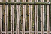Bamboo wall detail<br /> Nagaland,  ne India