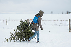 Young man carrying Christmas tree in snowy landscape, Bavaria, Germany